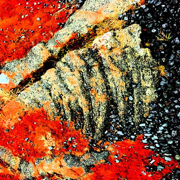 Lava | Lauree Feldman | Roost Artist