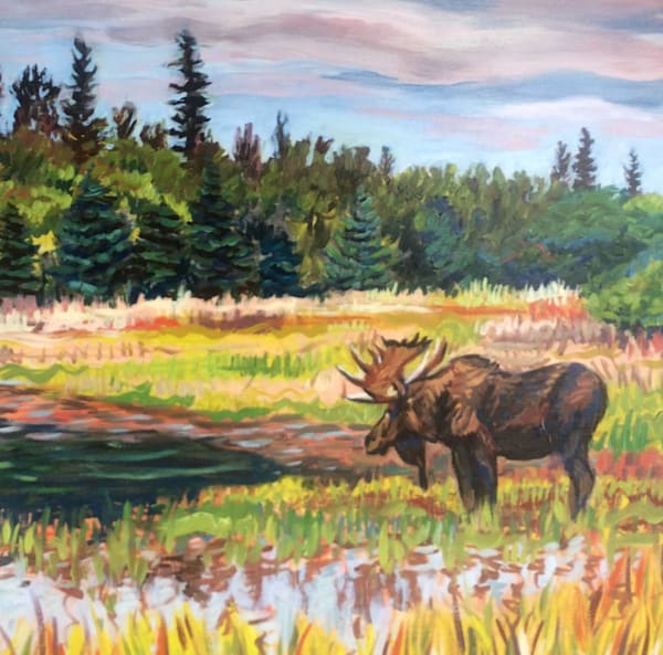 Bull Moose in Alaska Pond art print by Amanda Faith