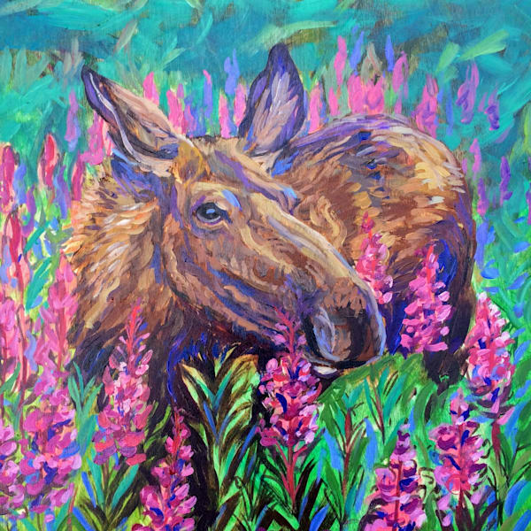 Fireweed Beauty - Alaska Moose