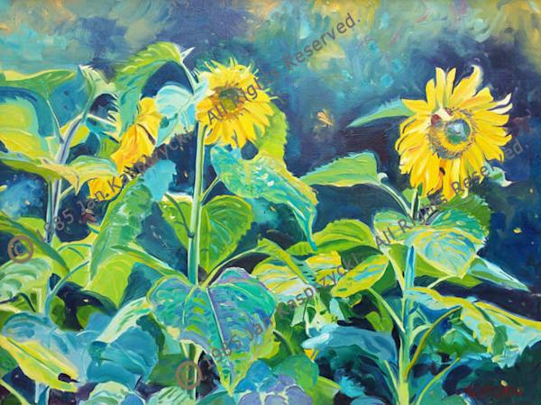 Sunflowers Art | Kasprzycki Fine Art Inc.