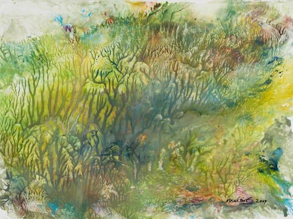Abstract nature paintings: shop prints/shop.malinskysyudio.com