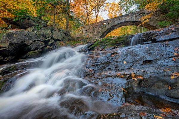 Arch Bridges in Vaughan Woods by Rick Berk