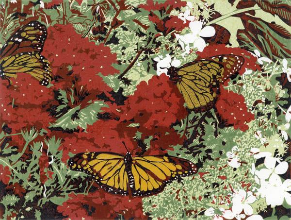 Monarch butterflies sip nectar from flowers.