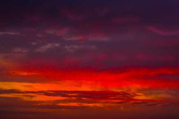 'Red Wavelengths' Photograph by Nancy Miller for sale as Fine Art