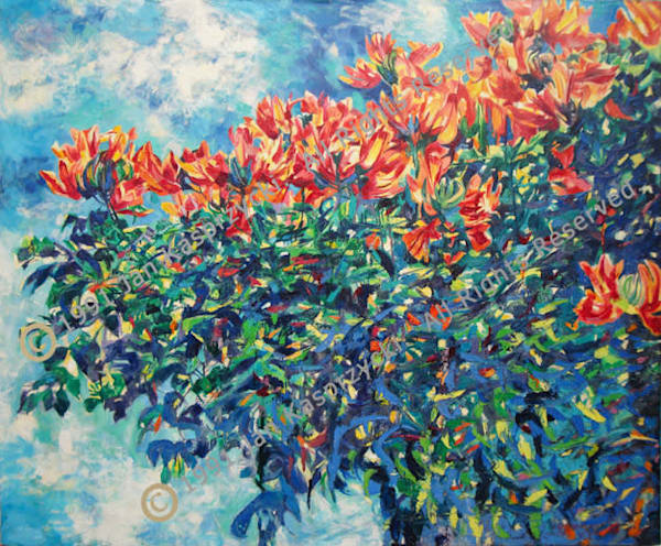 African Tulip Tree Art | Kasprzycki Fine Art Inc.