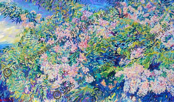 Rainbow Shower Tree Art | Kasprzycki Fine Art Inc.
