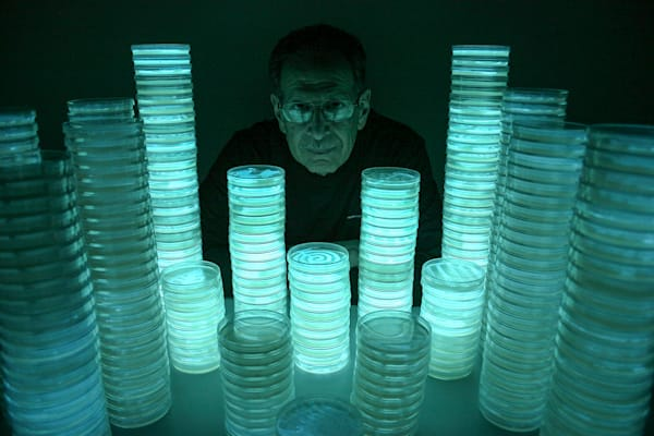 Towers of Light Reflected in the Glasses VI: Portrait of Peter N. Gray – Small Print, Photograph by the Light of Bioluminescent Bacteria by Hunter Cole