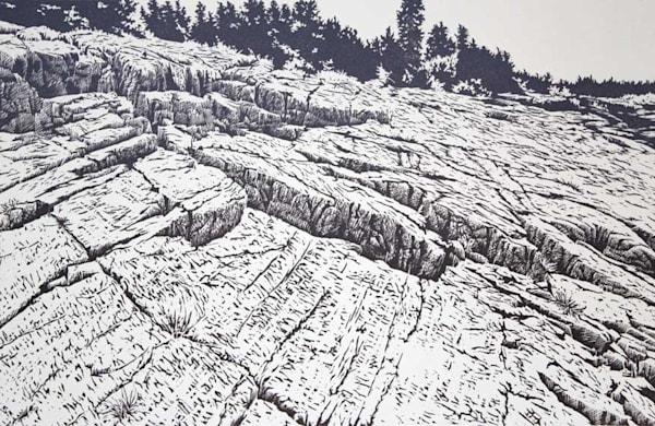Acadian Coast | William H. Hays
