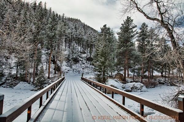 Cache La Poudre Canyon Scenic Drive 9474 Photograph | Colorado Photography | Koral Martin Fine Art Photography