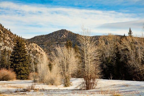 Cache La Poudre Canyon Scenic Drive 9513 Photograph | Colorado Photography | Koral Martin Fine Art Photography