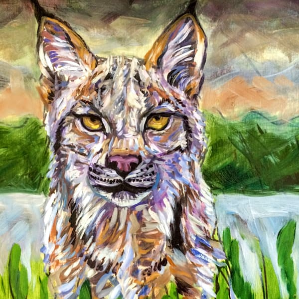 Alaska Lynx by Forest Art Print by Amanda Faith
