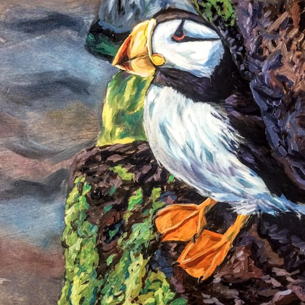 Alaska Horned Puffin by Ocean Rocks art print by Amanda Faith