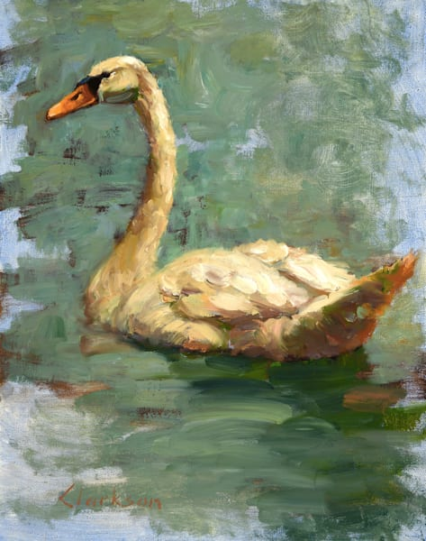 Mute Swan Original Oil Painting