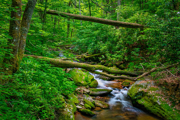 Kimsey Creek - Nantahala Mountains photography prints