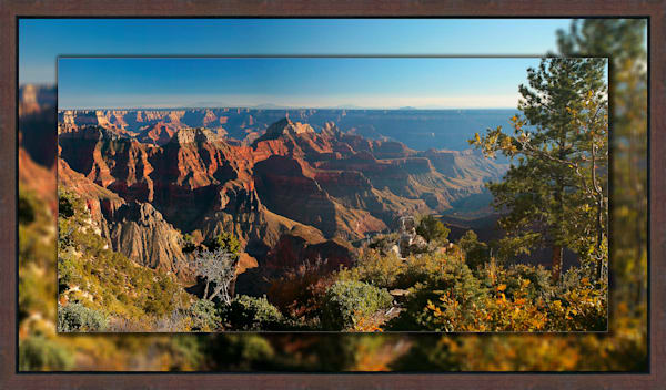 Grand Canyon North Rim 3D Reclaimed Timbers Narrow
