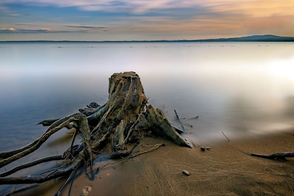 Sebago Shoreline by Rick Berk
