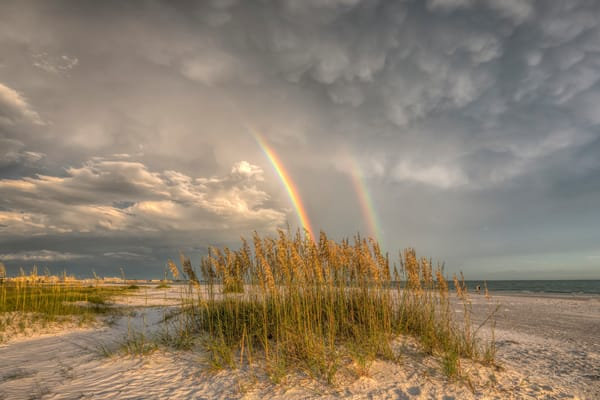Siesta Key Rainbow Oats