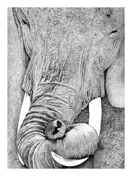 Tuskany (Smiling Elephant) Art | Pendragon Art Studios