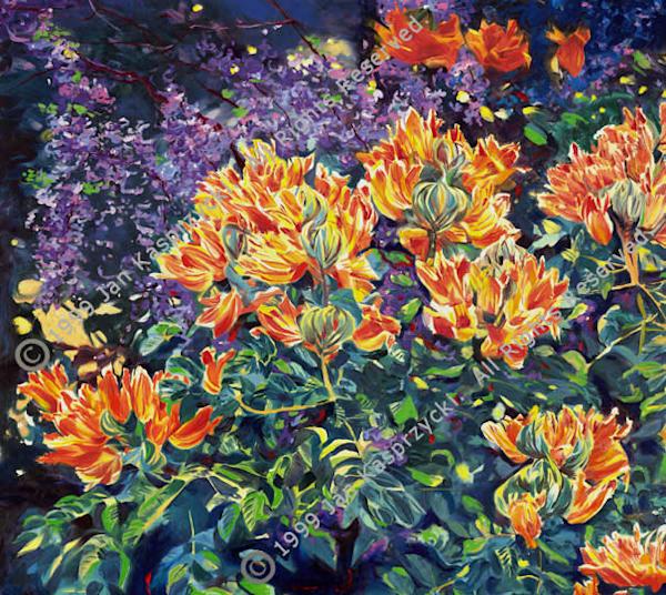 African Tulip & Jacaranda Trees, Ltd Edition Art | Kasprzycki Fine Art Inc.
