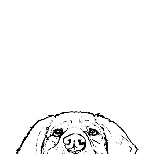 Retriever At The Table Art | Van Isle Dog Art