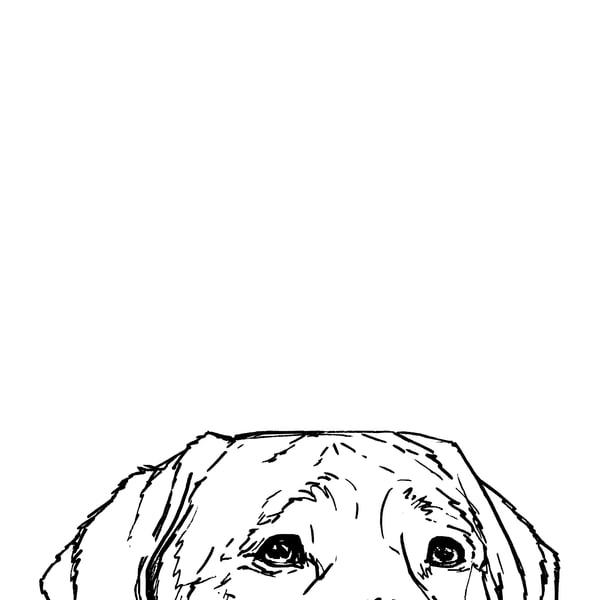Lab At The Table Drawing Art | Van Isle Dog Art
