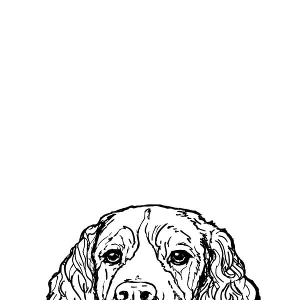 Spaniel At The Table Art | Van Isle Dog Art