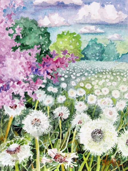 Lilac And Dandelion Seed Heads Art | David Beale