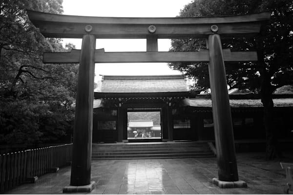 Meiji Shrine Torii  Tokyo, Japan Photography Art | Brian Ross Photography