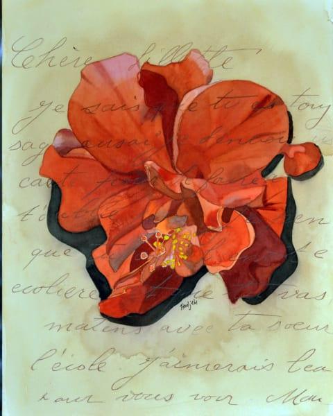 Habiscus Flower - A painting by Sanibel artist Shah Hadjebi