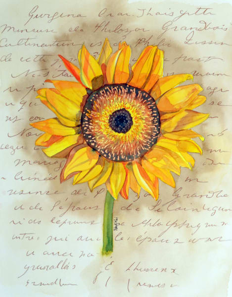 A painting of a sunflower by Shah Hadjebi