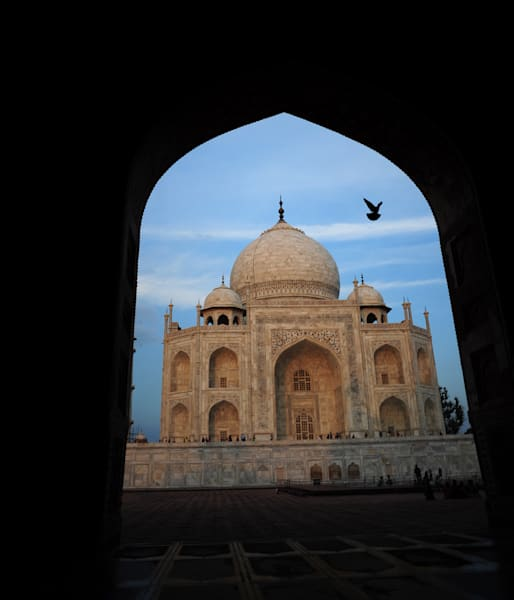 Taj In Arch With Bird Photography Art | Brian Ross Photography