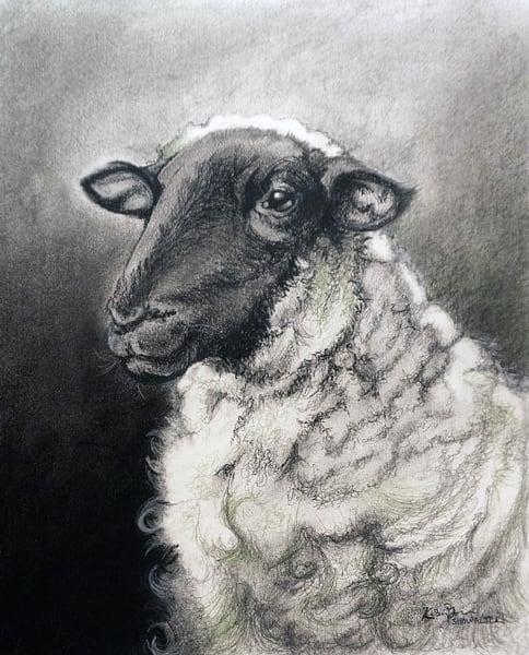 Sheep 2 Art | Kelsey Showalter Studios