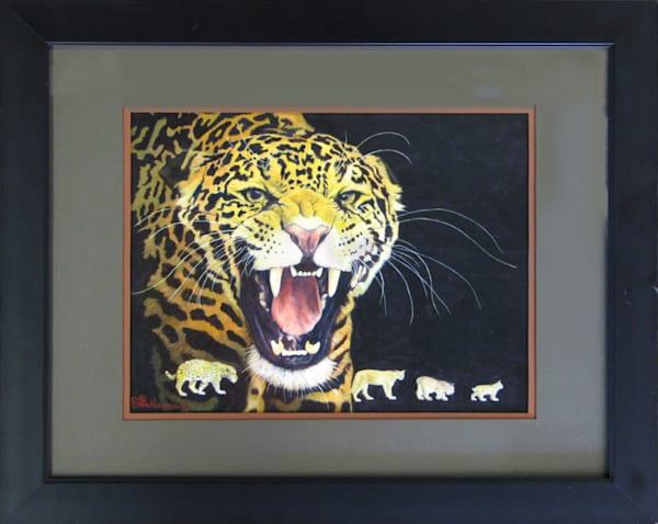 Colorado Wildcats