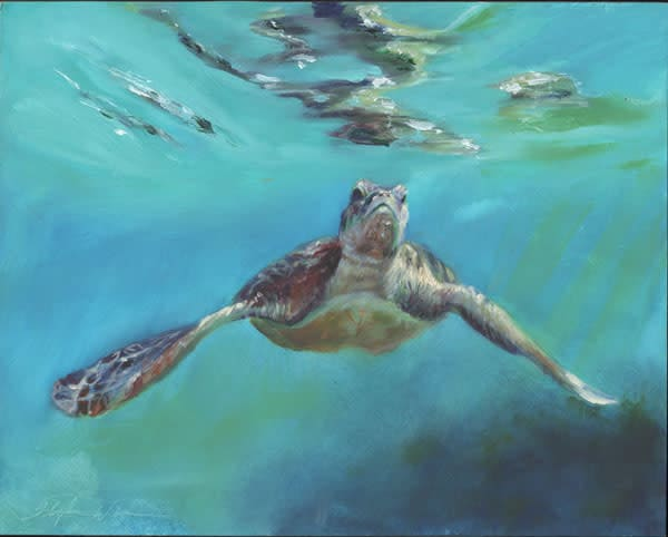 Sea Turtle Original Oil Painting