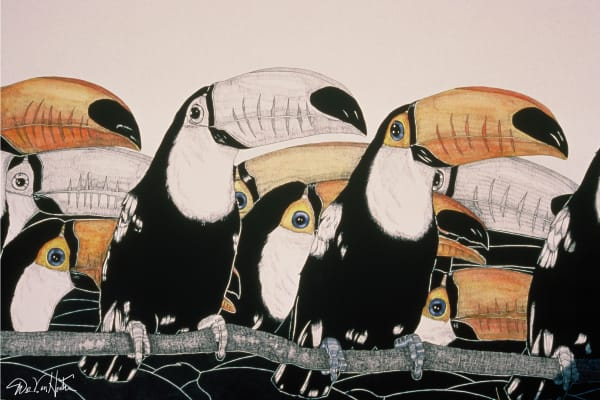 Crazy For Toucans Fine Art Giclee Prints By Dee Van Houten