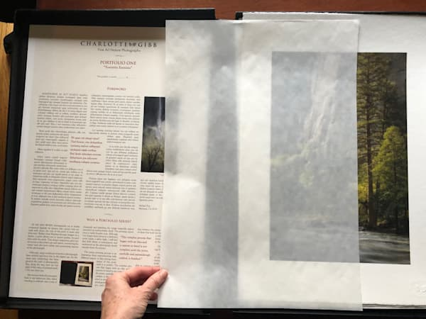 Portfolio One: Yosemite Fantasia