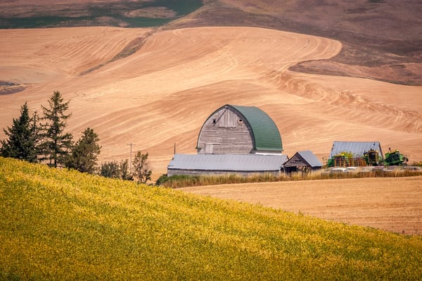 Old Barn and Wheat Field | Jim Parkin Fine Art Photography