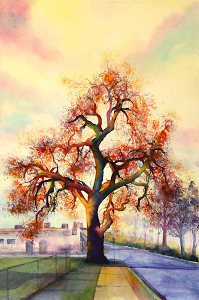 Old Tree In North Denver Art   Mickey La Fave