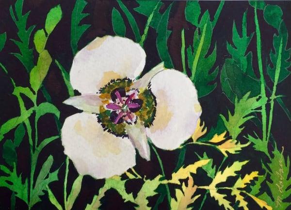 Trillium Art   Mickey La Fave
