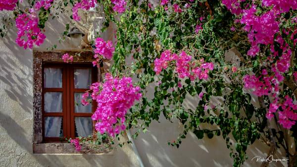 Alberobello in Italy | Shop Prints | Robert Shugarman Photography