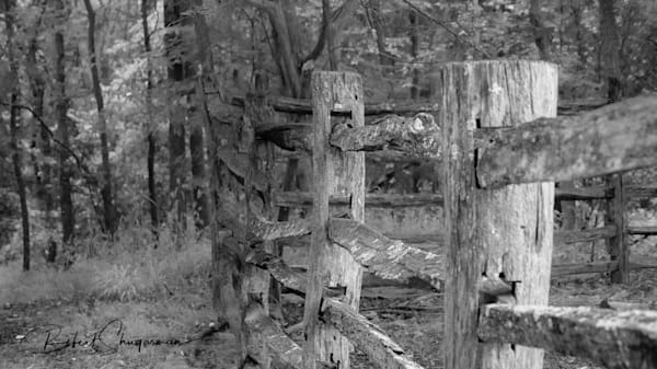 North Carolina Homestead Fence | Shop Prints | Robert Shugarman Photography