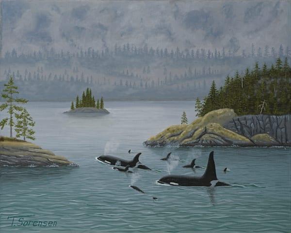16x20 Orcas On Paper Art | HFA print gallery