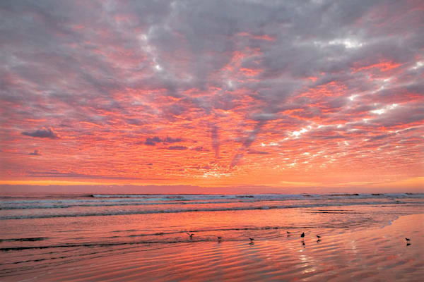 Sunrise, New Smyrna Beach, Florida, USA