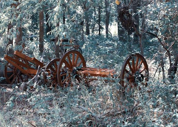 Log Wagon | Shop Prints | Robert Shugarman Photography