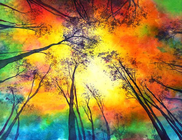 Sun Gazing Through The Trees Art | Mickey La Fave