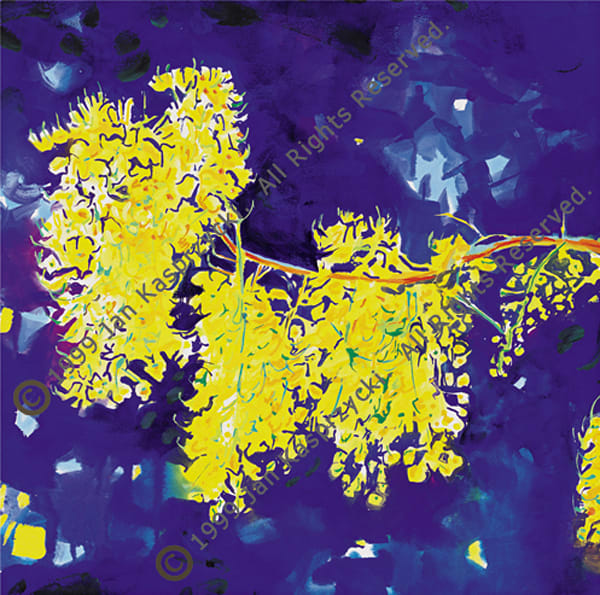 Yellow Shower Tree Blossoms, Ltd Edition