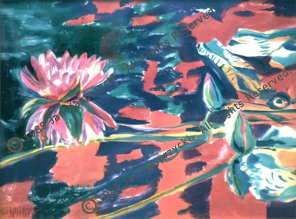 Waterlily Reflection