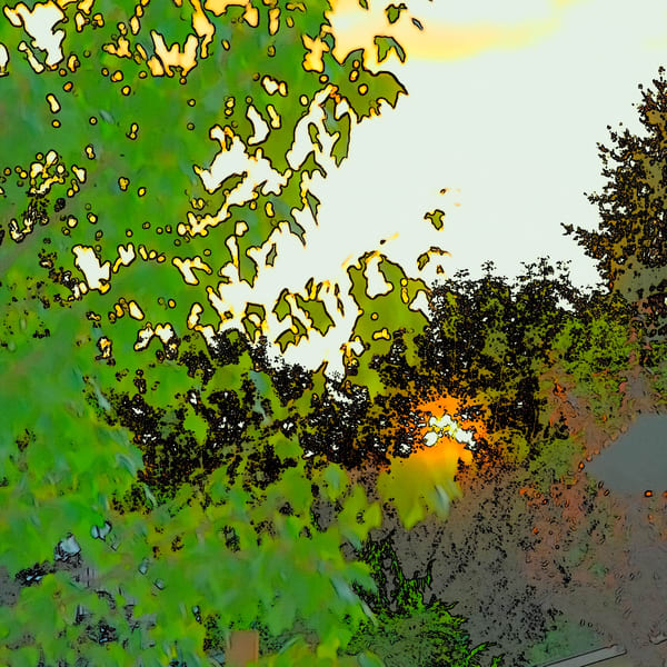 Setting Sun And Maple Color Sketch