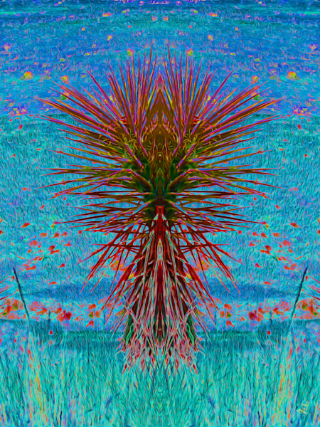 SEO