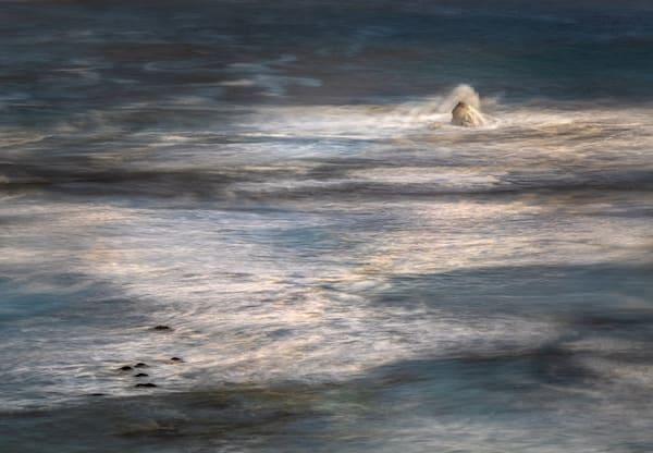 Sea Dance | North Coast of California
